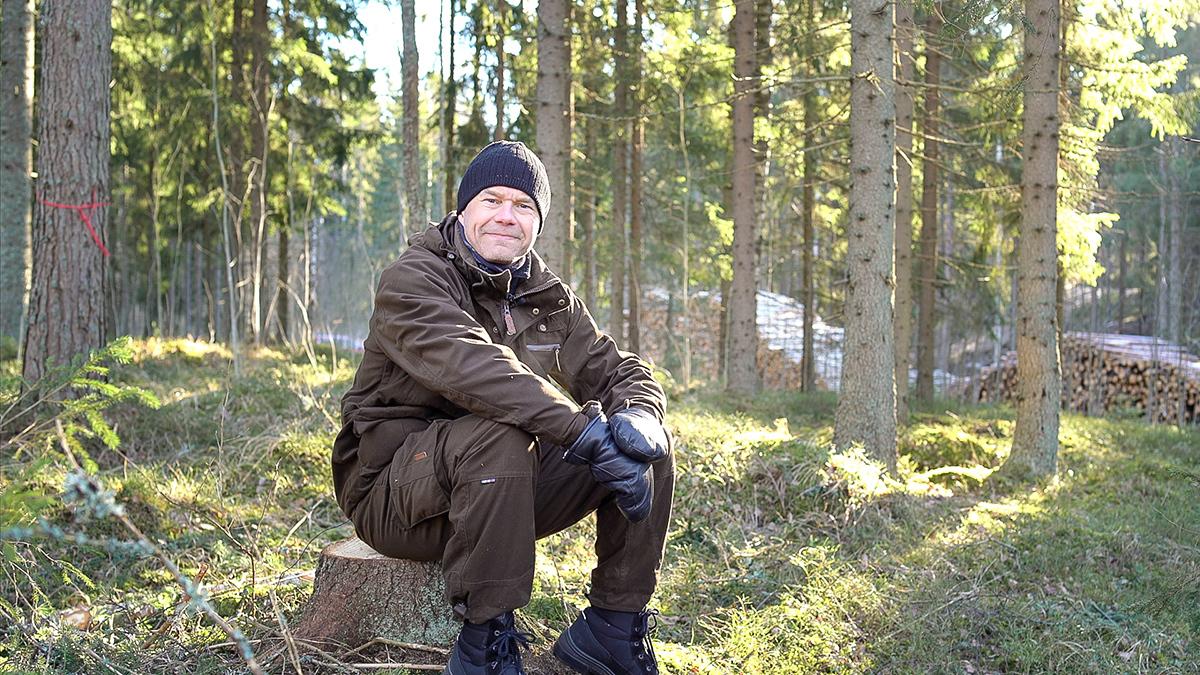SLC - Skogsstiftelsen 1 B Webben