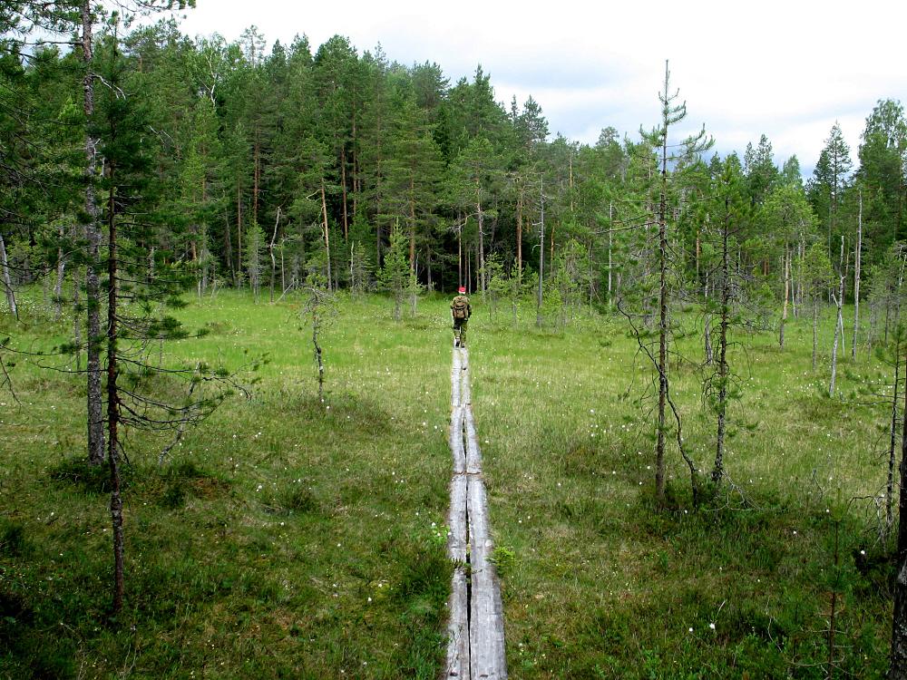SLC - Kuviasuomesta Fi Roine Piirainen