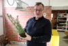 Mellanaplant 1 C Webben