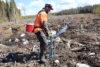 Planterare 1 C Webben